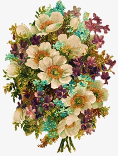 手绘花复古图片 花簇素材图片免费下载 高清装饰图案png 千库网 图片编号62013图片