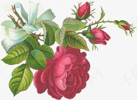 梦幻元素卡通花图片 花朵素材图片免费下载 高清装饰图案png 千库网 图片编号62083图片