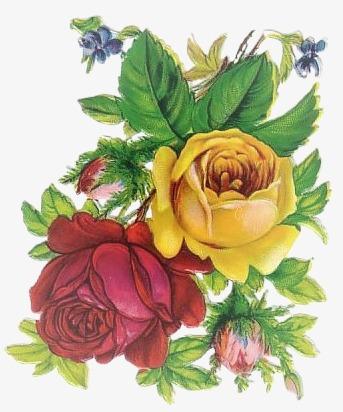 手绘花图案复古 卡通唯美花束