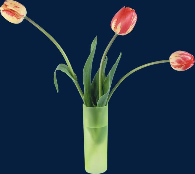 国画花卉素材花卉ps素材