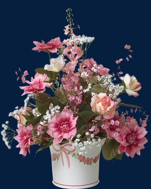 花卉ps素材花卉矢量素材