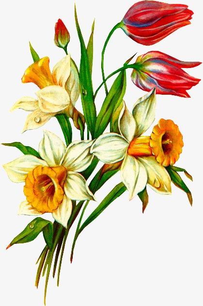 彩绘鲜花彩绘鲜花绿叶