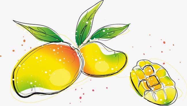 手绘卡通清新芒果