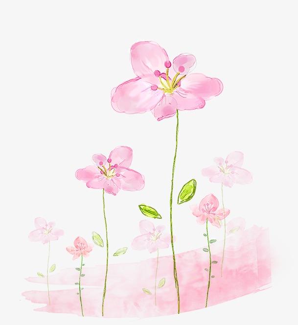 手绘粉色小花