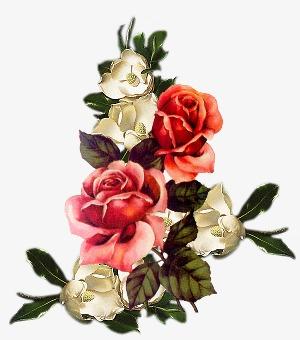 手绘花草素材绿植花卉