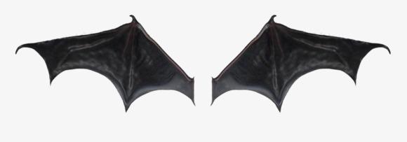 蝙蝠翅膀素材图片免费下载_高清png_千库网(图片编号