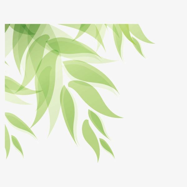绿色 树叶 小清新背景装饰图案 春天