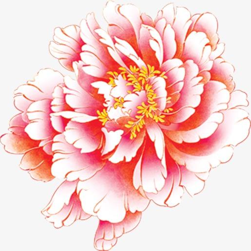 粉白色牡丹花png素材-90设计