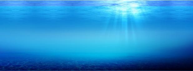 海的元素素材图片免费下载_高清装饰图案psd_千库网