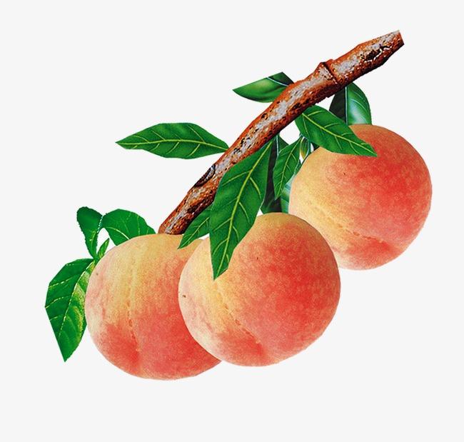 唯美 精美 水果 桃子 树叶             此素材是90设计网官方设计图片