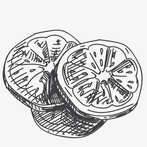 柠檬片简笔画