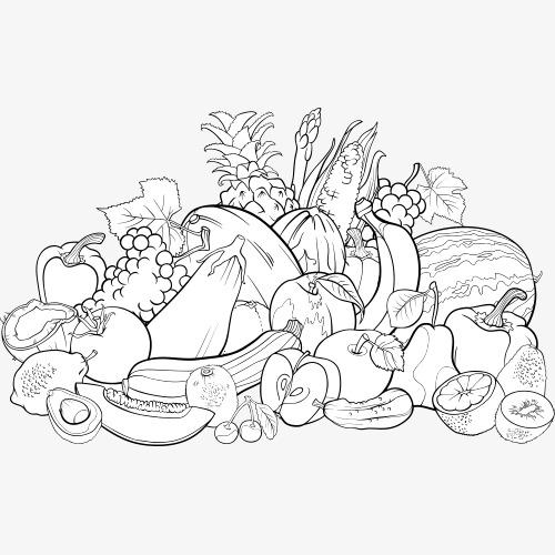 简笔画 线条 水果 黑白 速写 素描素材图片免费下载 高清装饰图案png 千库网 图片编号1462245