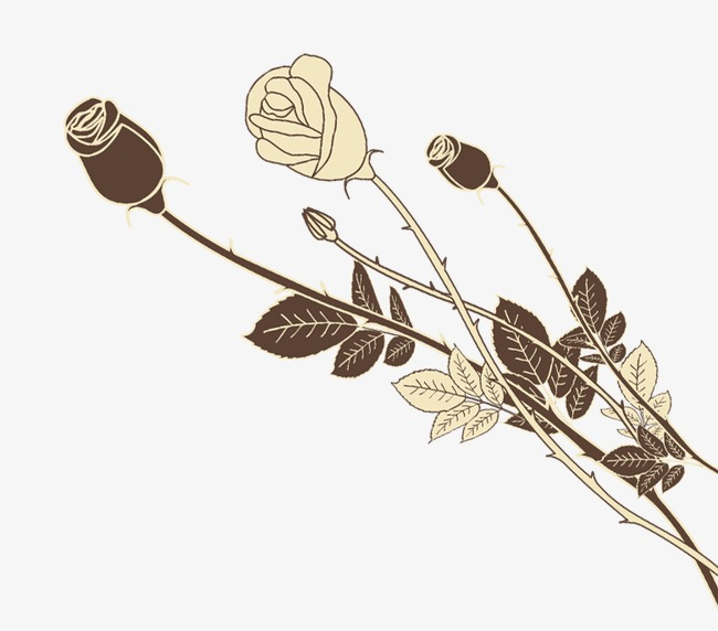 手绘玫瑰花素材图片免费下载 高清边框纹理png 千库网 图片编号1475087