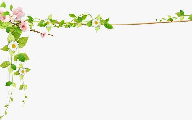 藤蔓花边素材图片免费下载 高清png 千库网 图片编号1523003图片