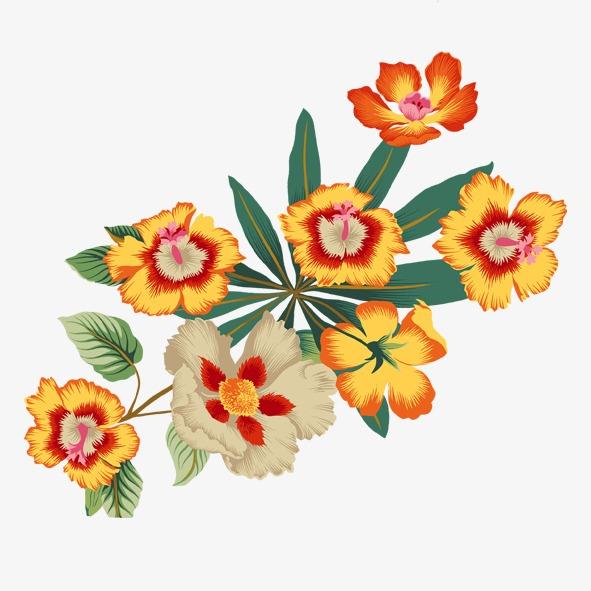 黄花 手绘花