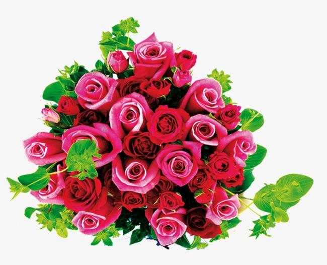国画玫瑰花