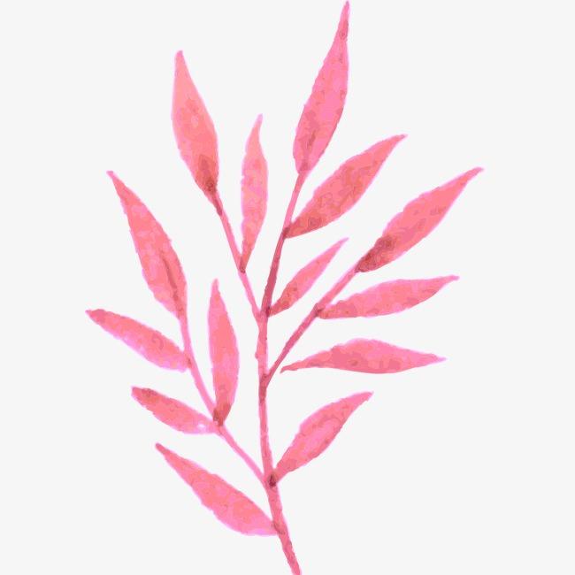 水彩画 植物 花朵 手绘 树叶图片