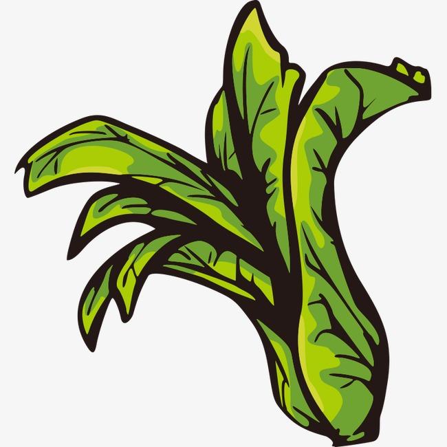 手绘 简笔画 蔬果 蔬菜 果蔬 卡通