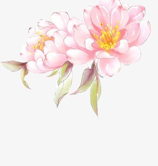 花苞花瓣中国风素材漂浮古风素材