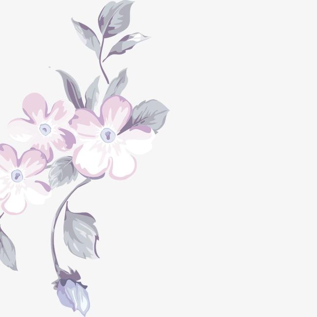 手绘 花卉 花朵 装饰花边 唯美 花瓣