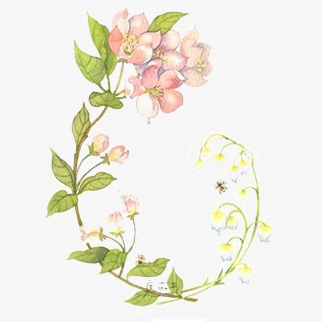 手绘花朵藤蔓装饰