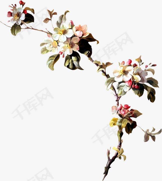 手绘花卉鲜花手绘古典花卉