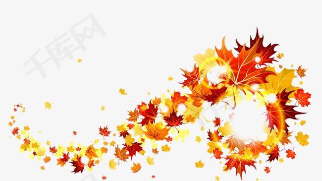 枫叶树叶素材图片免费下载 高清图片png 千库网 图片编号1854500