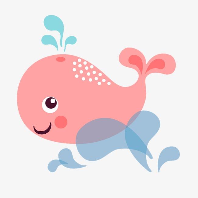 海豚的动物名片