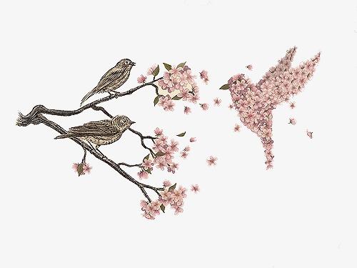 小清新 唯美 手绘 水彩画 小鸟