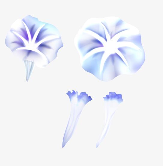 手绘水彩喇叭花