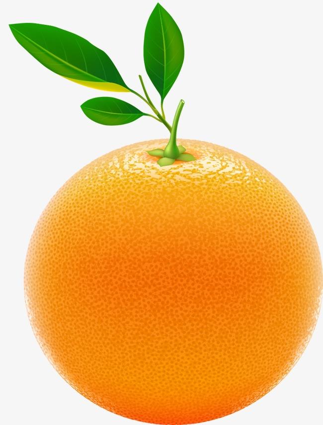 橙子 新鲜 香橙 橘子素材图片免费下载_高清装饰图案