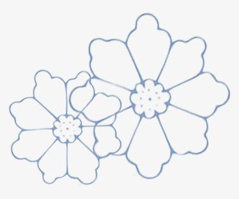 简笔画花朵可爱
