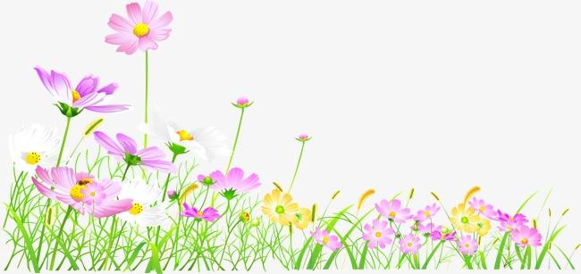 手绘花卉矢量卡通手绘ai线条花卉花朵鲜花花边绿草花草绿色植物