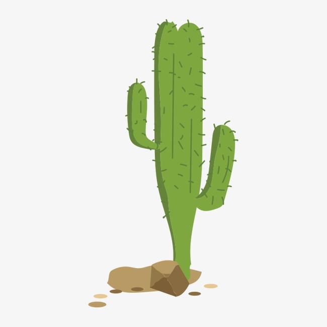 橡皮泥手工制作图片仙人掌