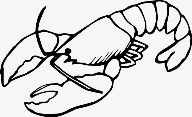 手绘龙虾素材图片免费下载 高清装饰图案psd 千库网 图片编号2109626
