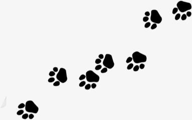 脚印 狗脚印动物脚印脚印 狗脚印 动物脚印免扣素材 手机端:脚印