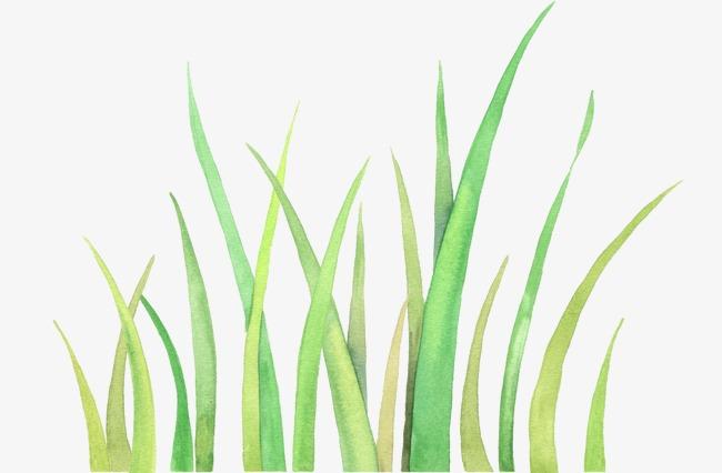 小草 绿色小草 手绘小草             此素材是90设计网官方设计出品