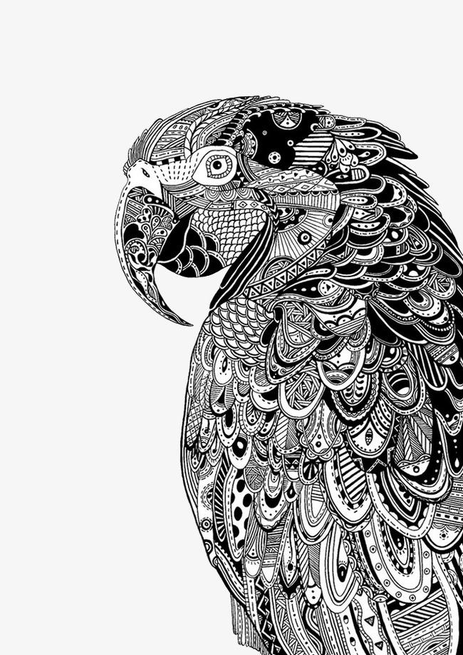 黑白装饰 动物 老鹰 写实黑白装饰  动物  老鹰  写实免扣素材