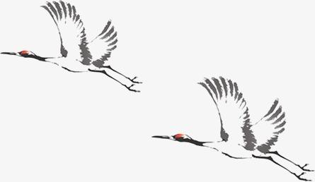 写意飞鹤的画法步骤