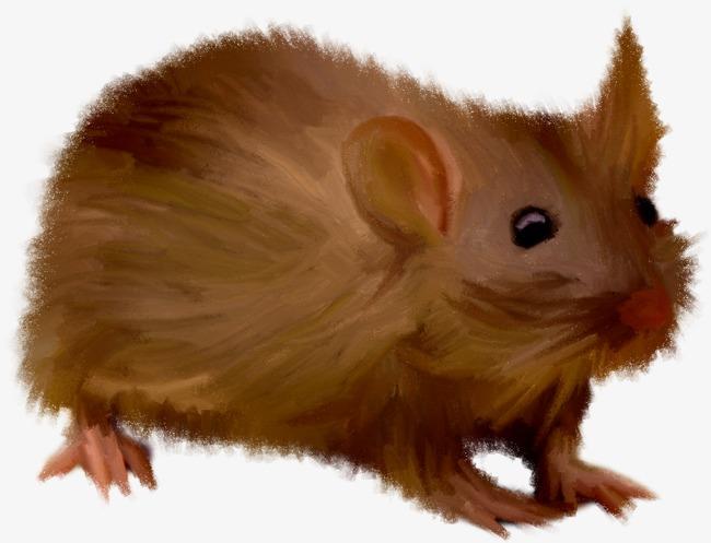 老鼠 动物 卡通 毛绒  仓鼠             此素材是90设计网官方设计
