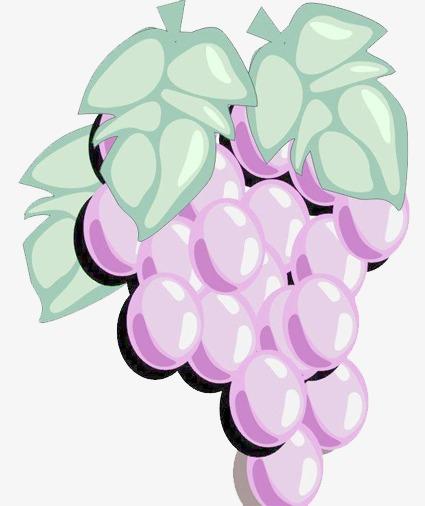 水彩手绘葡萄