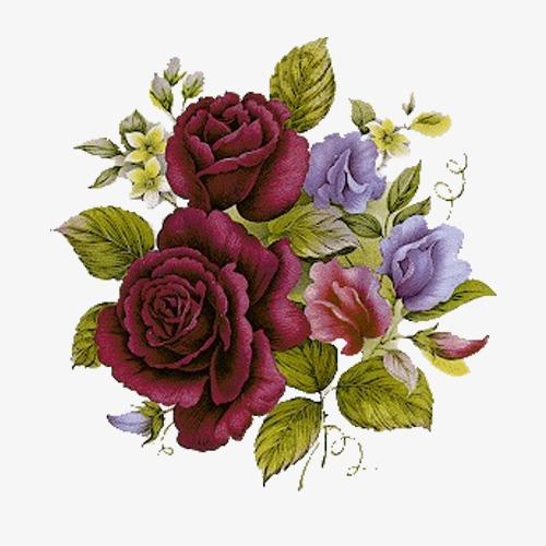 红色玫瑰手绘