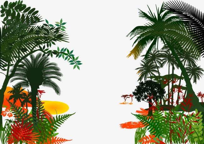 热带 丛林 树林