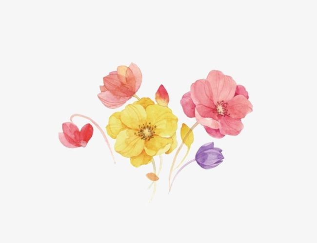 手绘水彩花植物手绘水彩花卉春季花装饰手绘花花朵彩色花彩绘花绚丽