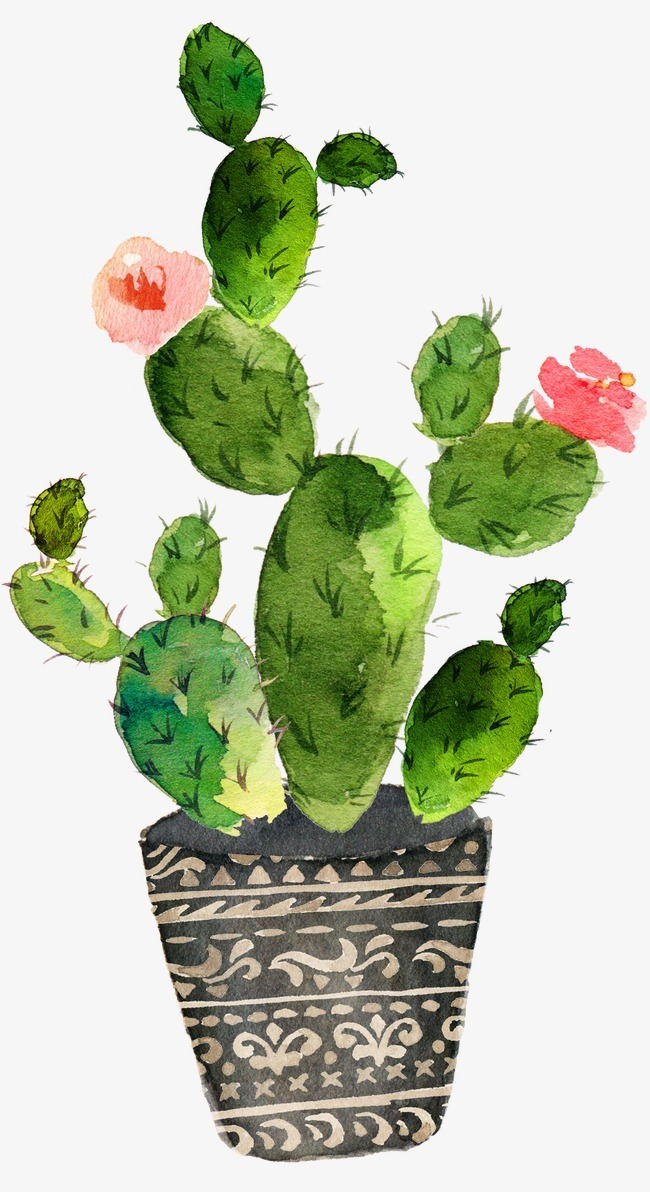 手绘 唯美 森系 水彩风格 仙人掌             此素材是90设计网官方