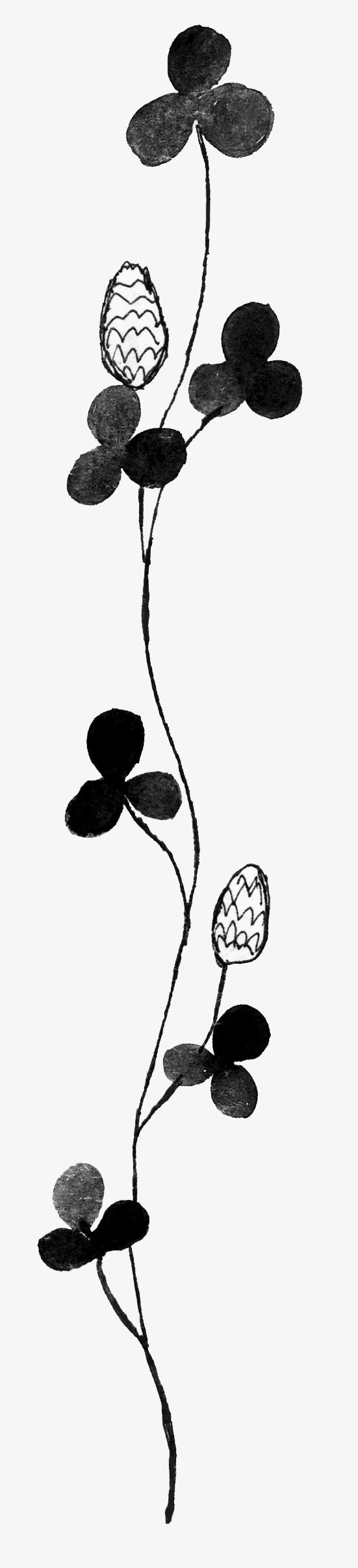黑白花朵简笔画