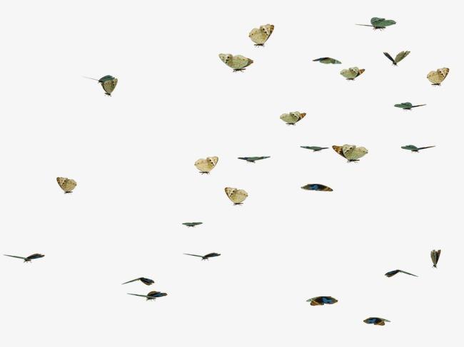 蝴蝶漂浮物png素材-90设计