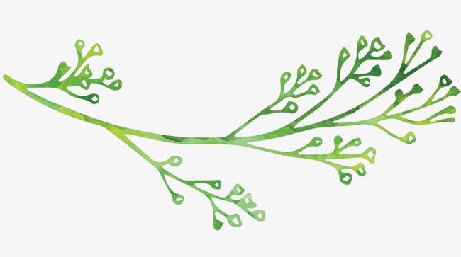 手绘小草 树枝