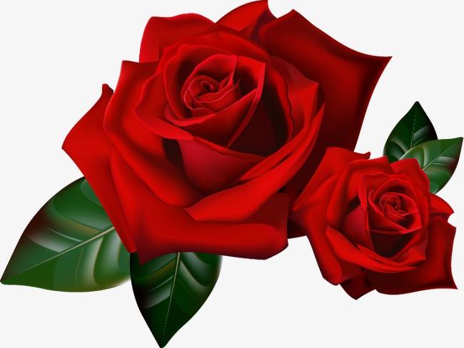 红色玫瑰花图案png素材-90设计图片