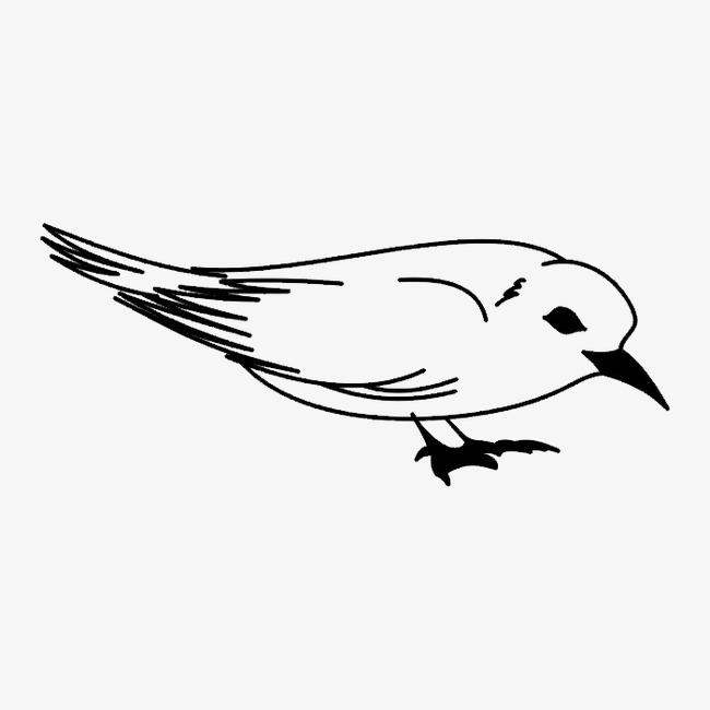黑白图案动物png素材-90设计